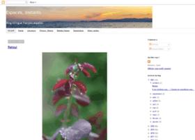 espacesinstants.blogspot.com