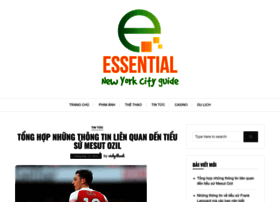 essential-new-york-city-guide.com
