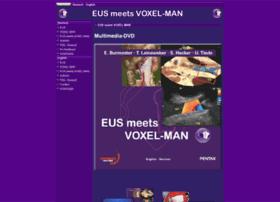 eus-meets-voxel-man.de