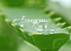 evergreenbeautysalon.com