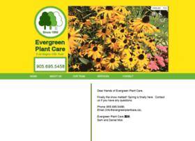 evergreenplantcare.com