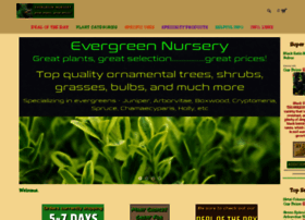 evergreenplantnursery.com