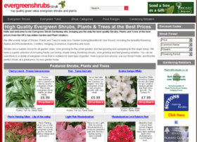 evergreenshrubs.co.uk