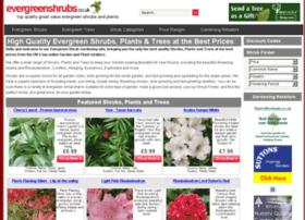 evergreenshrubs.co.uk
