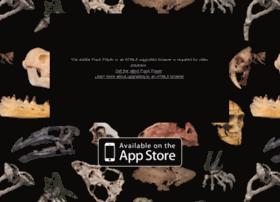 evolution-app.com