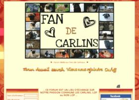 fan2carlin.forumsgratuits.fr