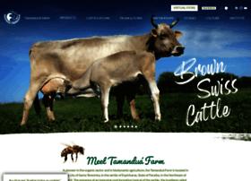 fazendatamandua.com.br
