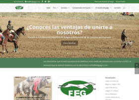 fedegalgos.com
