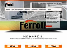 ferroliservisi.com