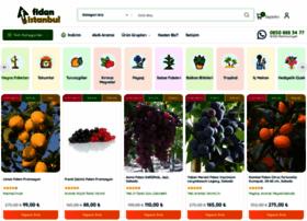fidanistanbul.com