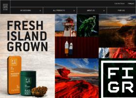figr.com