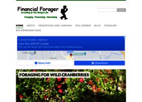 financialforager.com