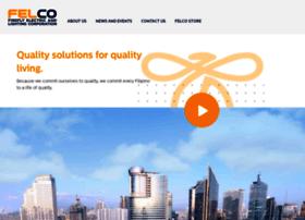 fireflyelectric.com