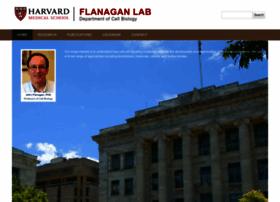 flanagan.hms.harvard.edu