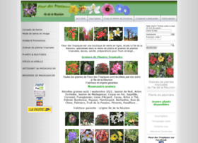 fleurdestropiques.net
