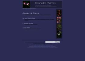 fleurs-des-champs.com