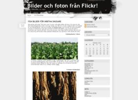 flickrbilder.se