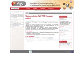 flip-fp7.eu