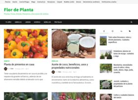 flordeplanta.com.ar