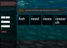 floridaforagefish.igfa.org