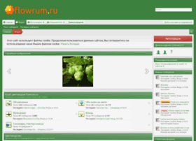 flowrum.ru