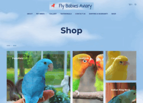 flybabies123.com