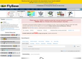 flybase.net