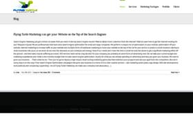 flyingturtlemarketing.com