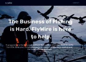 flywirecameras.com