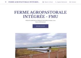 fmucongo.org