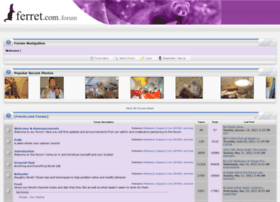forum.ferret.com