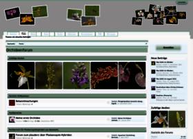 forum.orchideen-forum.de