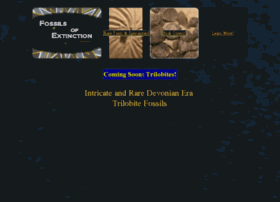 fossils4sale.com