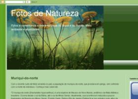 fotosdenatureza.blogspot.com