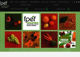 fpef.co.za
