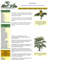 Fabriquer un palmier en carton websites and posts on for Fabriquer un palmier artificiel