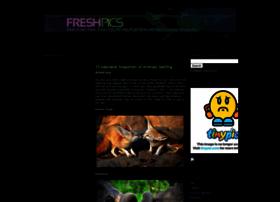 freshpics.blogspot.com