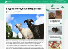 friendsofgreyhounds.org