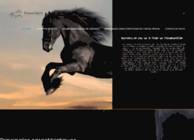 friesianspirit.com
