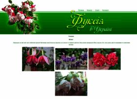 fuchsia.com.ua