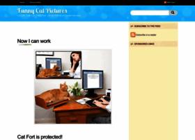 funny-cat-pics.blogspot.com