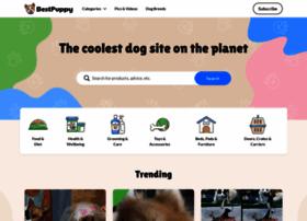 funnydogsite.com
