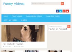 funnyvideosever.net