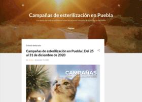 fupapuebla.blogspot.mx
