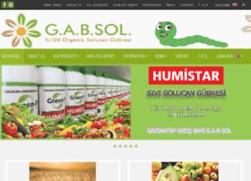 gabsolucan.com