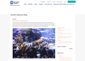 galleries.neaq.org