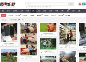 gaoxiao.tuku.com