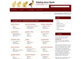 gasik.net