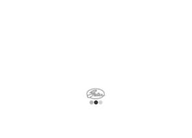 gatesautocat.com