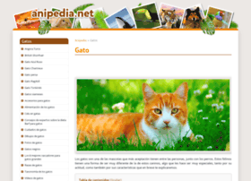 gatos.anipedia.net